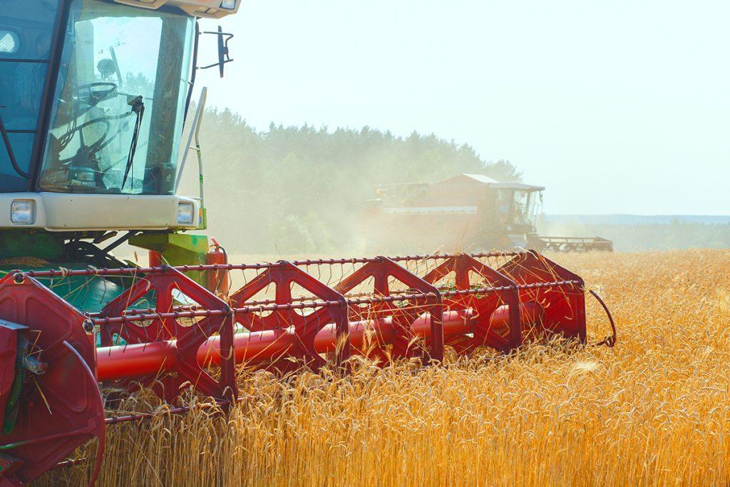Rodamientos para maquinaria agrícola - Royse, Rodamientos y Servicios