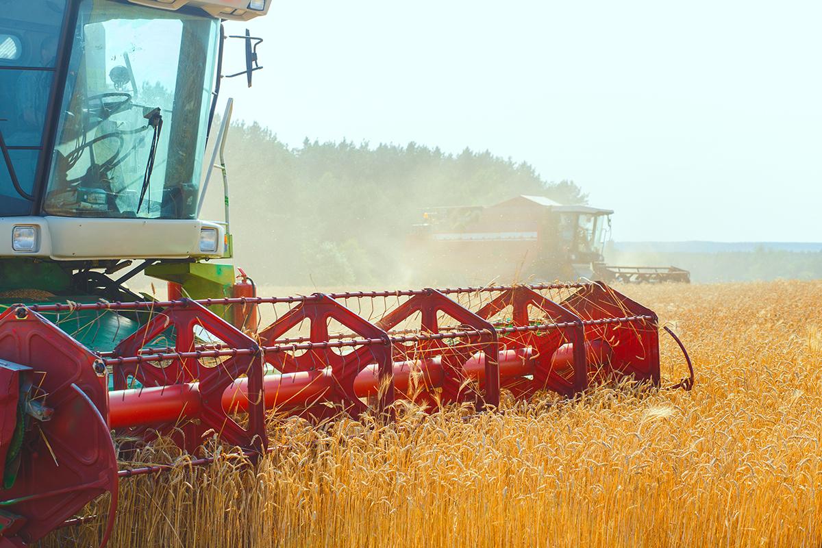 Rodamiento para maquinaria agricola